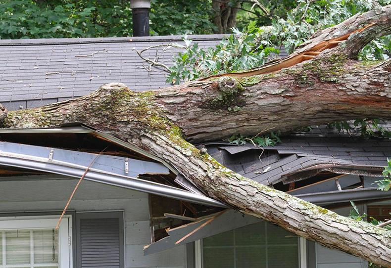 Naples-Hurricane-Damage-Repair-Company